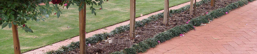 Austral | Clay Pavers | Australian Clay paving
